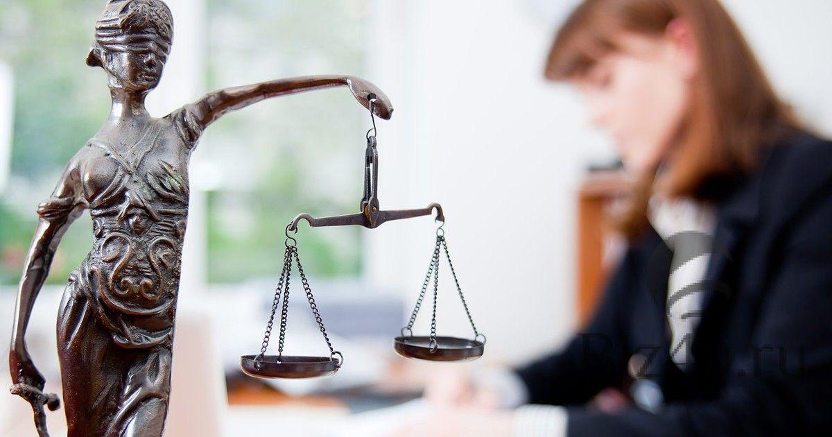 Юридическая клиника Южно-Уральского государственного университета провела День бесплатной юридической помощи